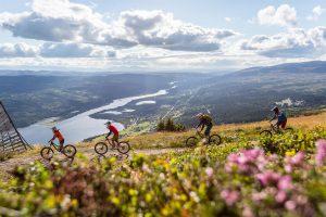 Cykling Åre Niclas Vestefjell