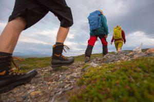 Vandring Niclas Vestefjell