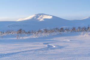 Snöskoterspår. Foto: Hans Wärdell