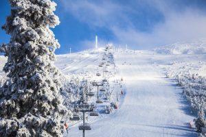 Lofsdalen skidåkning Martin Olson