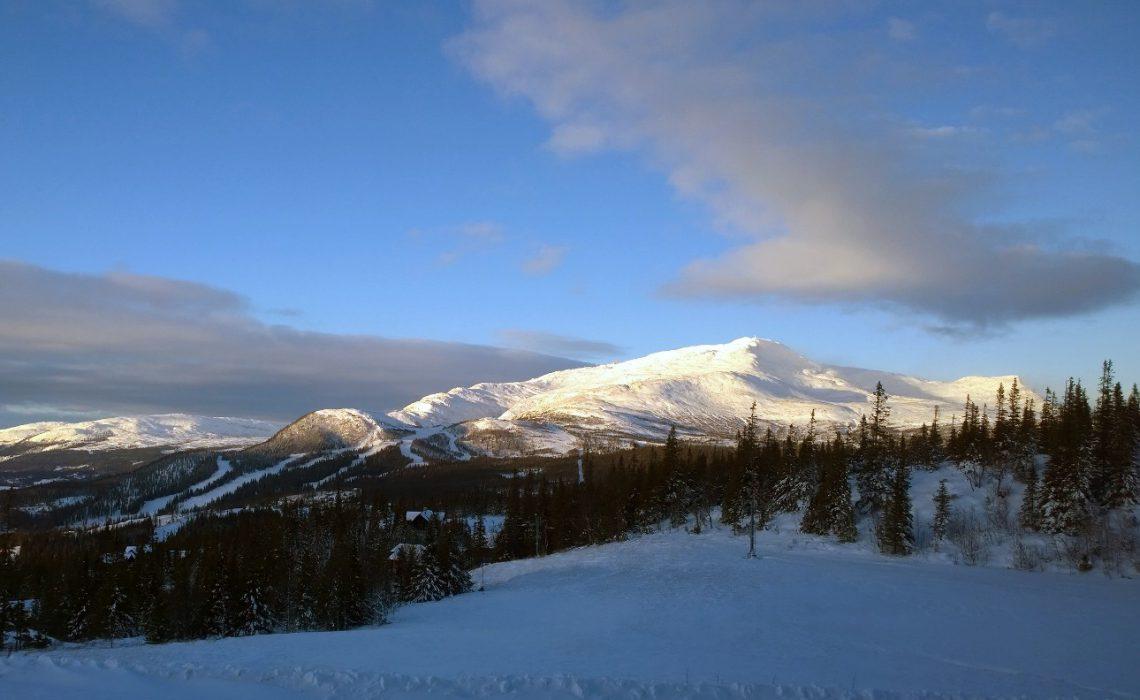 fjäll vinter skidåkning åre skog snö