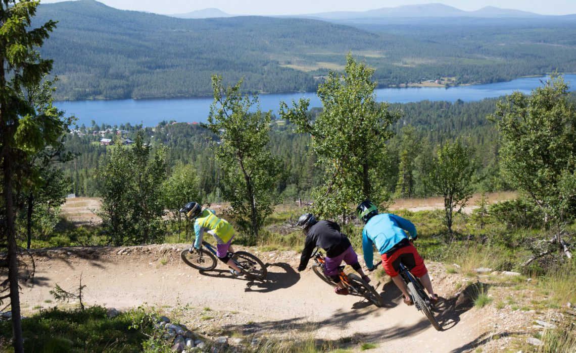 cykling xc fjäll sommar skog trail