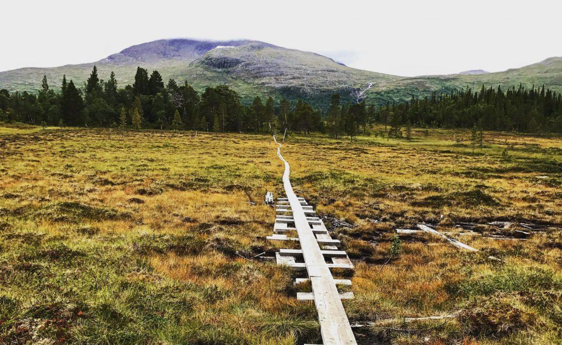 Vandring spång fjäll höst myr ensamhet. På väg mot Silverfallet, Storsnasen, Handöl, Enafors.