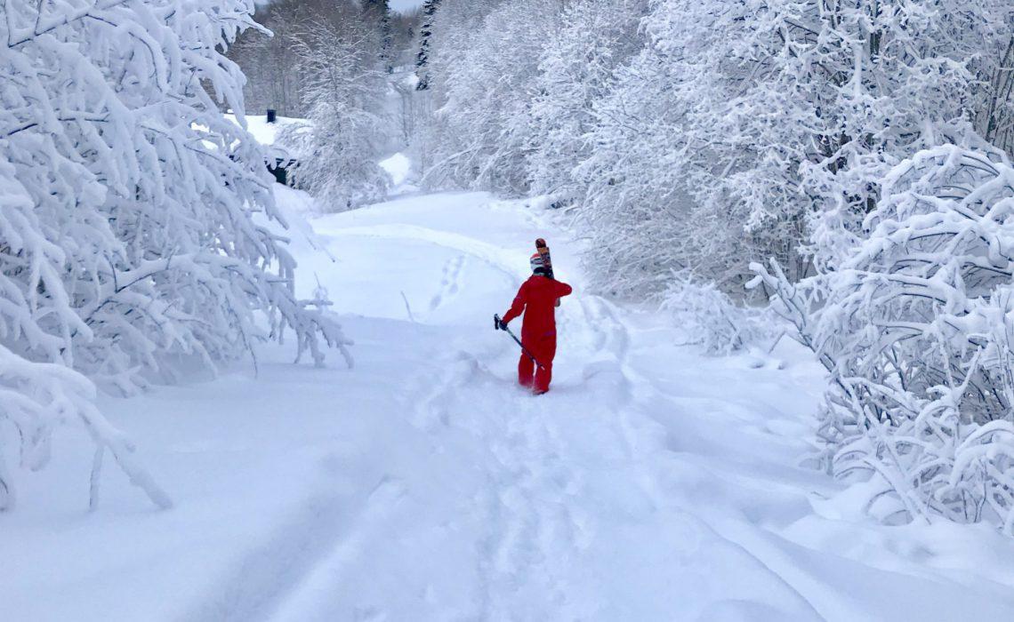 snö äventyr skidåkning