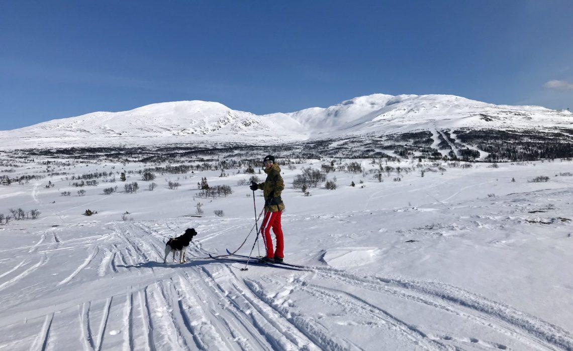 turåkning med hund Anne Adsten