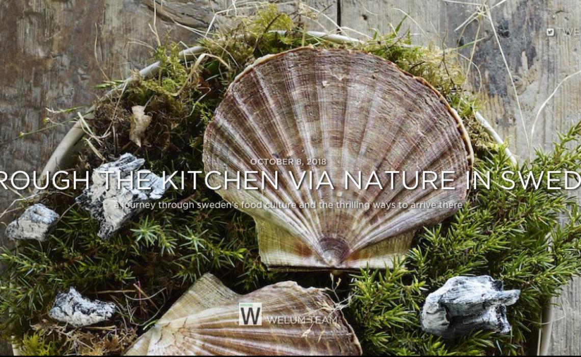 Welum Gastronomy Sweden